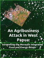 """Download the report """"An Agribusiness Attack in West Papua: Unravelling the Merauke Integrated Food and Energy Estate"""""""
