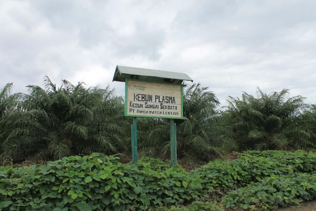 Plang PT. RML