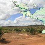 West Papua Oil Palm Atlas